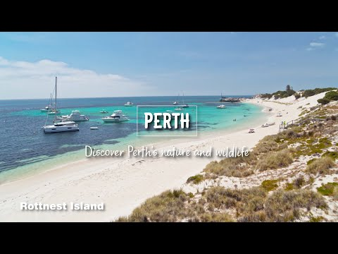 Perth, Discover Perth's Nature And Wildlife