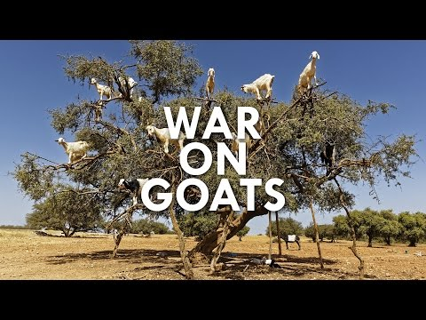 The War on Goats