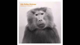 Nils Petter Molvaer-Sleep With Echoes (Baboon Moon)
