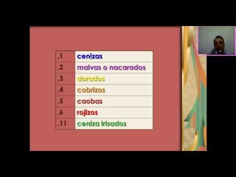 Color Chart Hair Theory  Carta de Colores para el Cabello