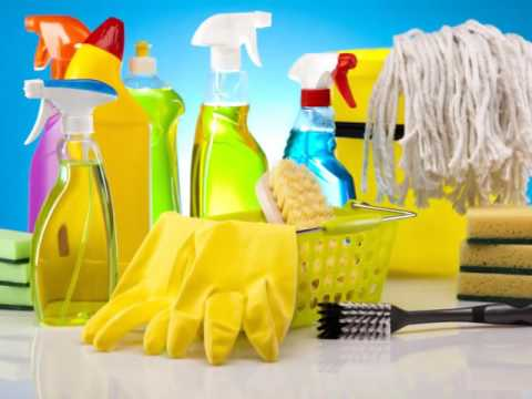 The Dust Bunnies Cleaning Service - (936) 206-5126