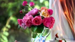 Фон для слайдшоу цветы FULL HD