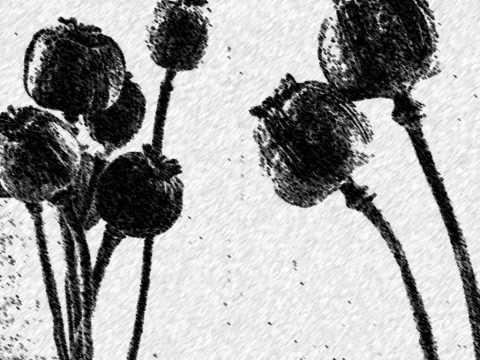 Morphine - The Night (album version - lyrics)