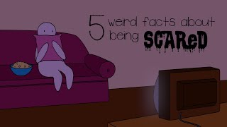 5 Weird Facts About Being Scared