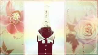 Украшение на свадебное шампанское - комплект Жених и Невеста Retro Gilliann GLS161