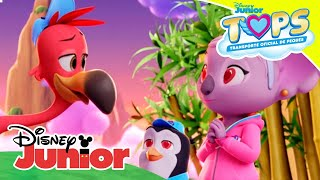 Download TOPS Transporte Oficial de Peques: Momentos Mágicos - Un panda adorable | Disney Junior Oficial