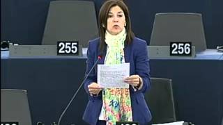 Izaskun Bilbao Barandica on Public consultations in all EU languages