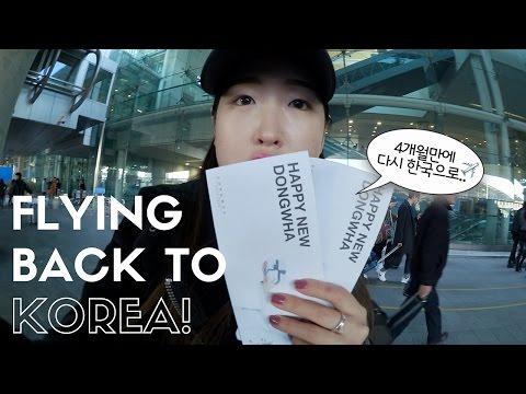 4개월만에 다시 한국으로... ✈️ Flying back to Korea!