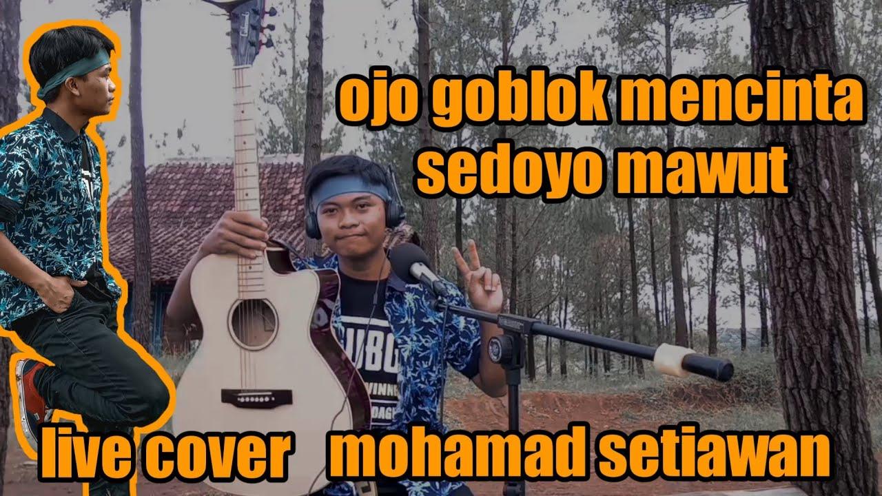 SEDOYO MAWUT - OJO GOBLOK MENCINTA | LIVE COVER MOHAMAD SETIAWAN