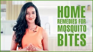 Home Remedies To Get Rid Of Mosquitoes Bites Scars & Allergies – Natural Treatments