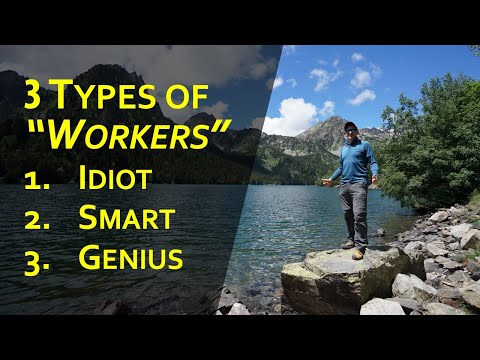 3 approaches to work: Idiot, Smart and Genius (inspired by @Sadhguru )