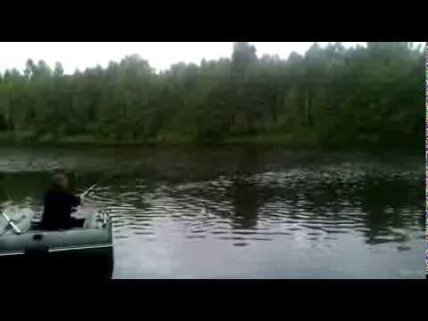 ловля на кружки на припяти