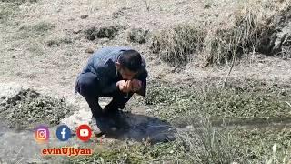 Dengbej Mihemede Agiri - Poşmanê gewrê (Bekir beg)