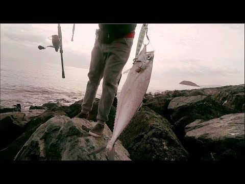 Shore Jigging in Cold Weather | Fishing in UAE | شور جقنق