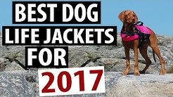 Best Dog Life Jacket Models for 2017
