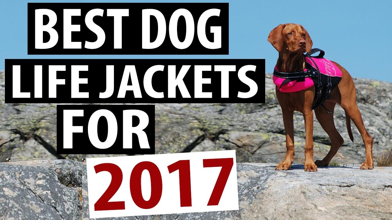 Make Dog Jackets
