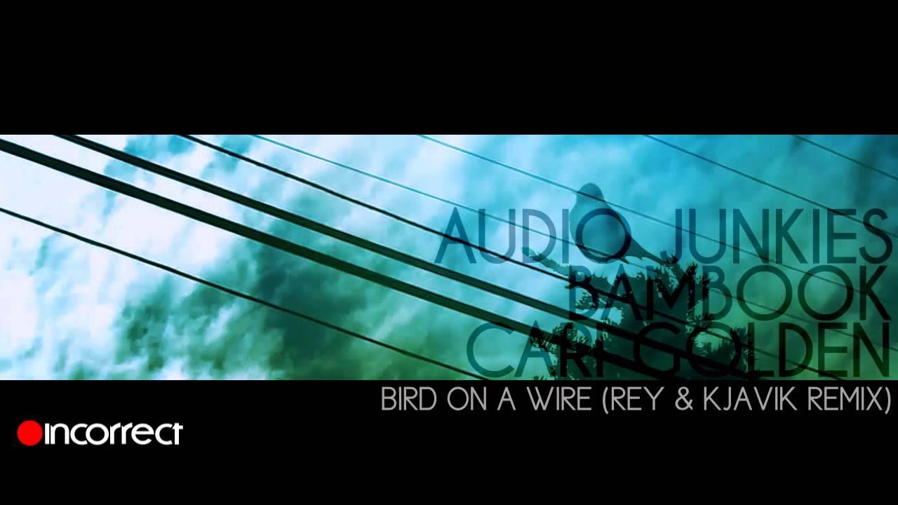 Audio Junkies, Cari Golden - Bird On A Wire (Rey & Kjavik Remix ...