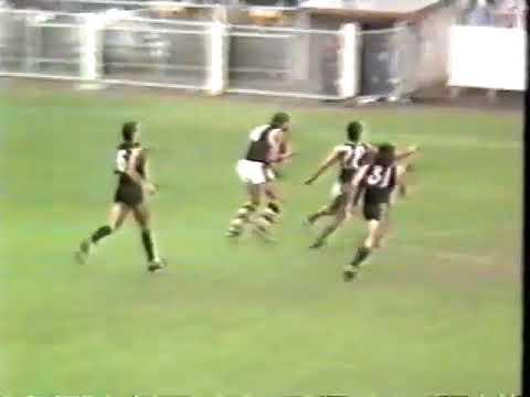 1988 Round 6 Carlton Vs St Kilda at Princes park & Footscray Vs Richmond brief hlts  2 mins arter &