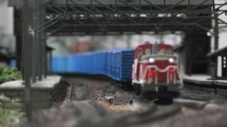 Nゲージレイアウト 2010に終了した紙輸送青ワム貨物列車。焼島-新タ:DE10、信越本線:EF81、上越線:EF64重連の時期をイメージ。