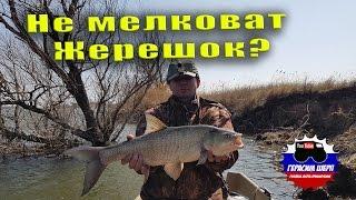 За Рыбой В Астрахань! Граница На Замке! Вопрос Бывалым Жерех Не Мелковат?