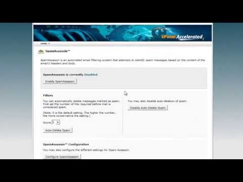 How to disable receiving spam messages to your email using cPanel