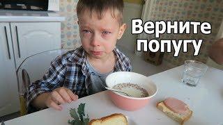 VLOG: Клим скучает по попуге / Мои лайфхаки / Видео Байга