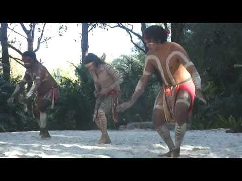 Australian Aboriginal Crane Dance
