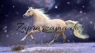 Konie piękne zwierzęta💖#4