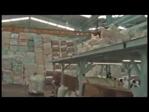 MIL ANUNCIOSCOM - Adulto Compra-venta de bulldogs adulto