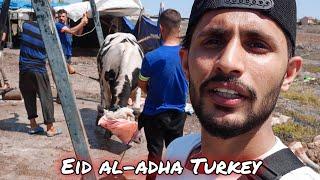 Eid al-adha Mubarak from Istanbul Turkey 🇹🇷   How Turkish peoples perform Qurbani   Bakra Eid 2021