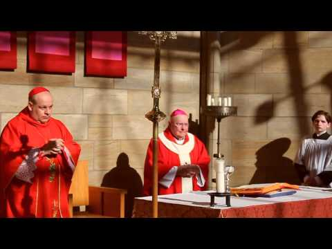 2014 Synod of Bishops Pentecost Vigil Eucharist (Old Catholic Confederation)