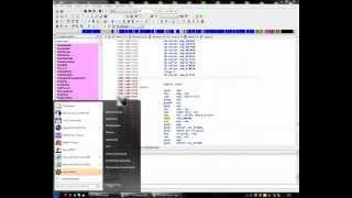 iDA Pro поиск HEX значений в играх