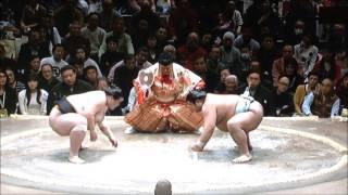 SUMO Jan.Stage 2day 平成29年大相撲初場所2日目 2017年1月9日.