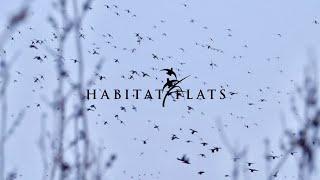 Habitat Flats: Greatest Hits [2020-2021]