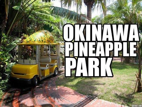 Okinawa Pineapple Park | Nago, Japan | Staycation Pt. 2