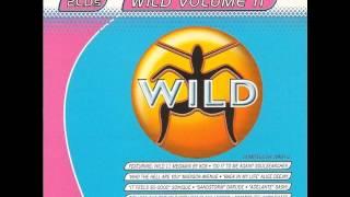 WILD FM VOLUME 11 - WILD VOLUME 11 MEGAMIX (KCB)