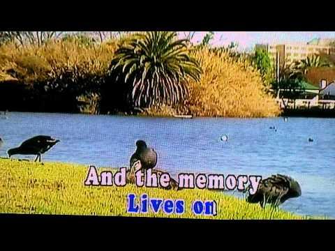 Please Don't Stop Remembering (Karaoke)