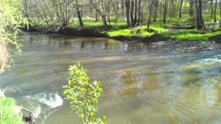 Rapids on Tuscarawas River in Canal Fulton in the Spring