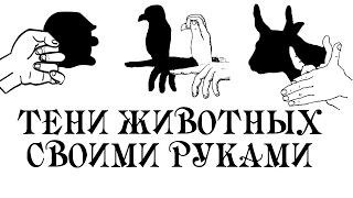 Тени животных своими руками