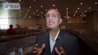 بالفيديو : تعرف على أفضل سلالات و انواع الحمام المصرى