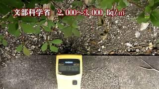 衝撃の首都放射能汚染 日本崩壊までのカウントダウン thumbnail