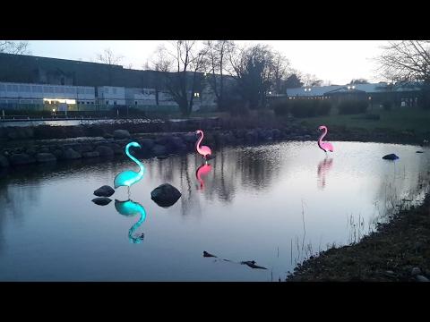 Grugapark Parkleuchten 2017. Essen. Grüne Hauptstadts Europas. Bonito Parque, atracción de Luces.