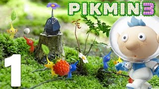 Pikmin 3 Episode 1 FR Wii U   L