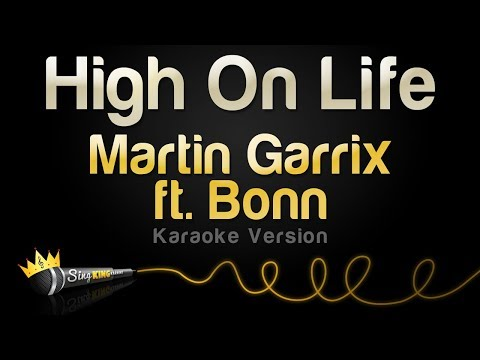 Martin Garrix ft - High On Life (Karaoke Version)