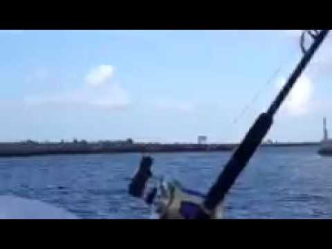 Best west palm beach fishing aboard reel intense youtube for West palm beach fishing