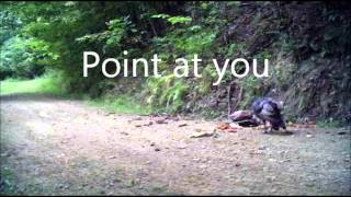 Justin Moore : Point at you Lyrics