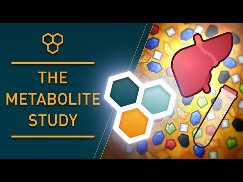 Wim Hof Method & The Metabolism | New Study Results
