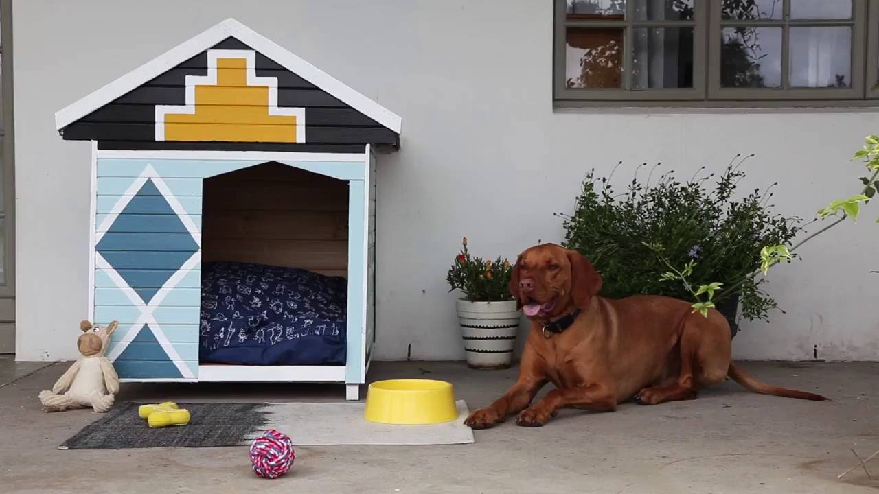 Dog kennel | Builders South Africa