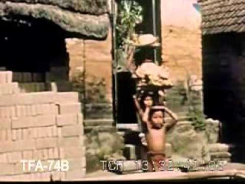 Java & Bali Dance & Culture