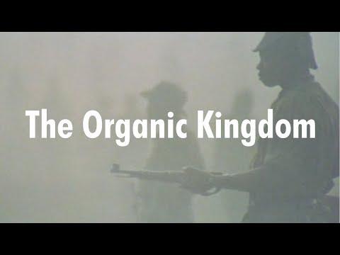 The Organic Kingdom - Angola '64